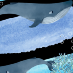 National Marine Month: The Whale Unit's contribution to marine resources conservation