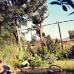 Try in Pretoria: Jan Cilliers Park